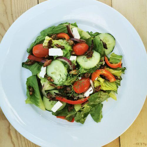 Salade_verte_ete_insectes_comestibles_Mexicoise_03